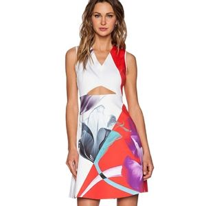 Clover Canyon Cutout Lily Dress